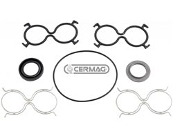 Series Of Gaskets Standard Serie Without Distributor