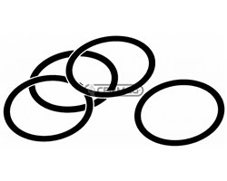 O-Ring For Din Norm 24°