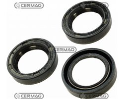 Oil Seal Ring Dimensions 40X62X10 Mm Type Basl