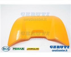 Guard - BCS genuine - 55253019Y - replaces - 55253019